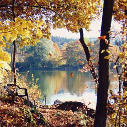 autumn colorsplash colorful photography nature