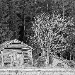 barn landscape tree finland