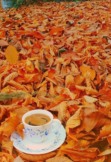 #turkishcoffee #autumn #dryleaves #colors #photography