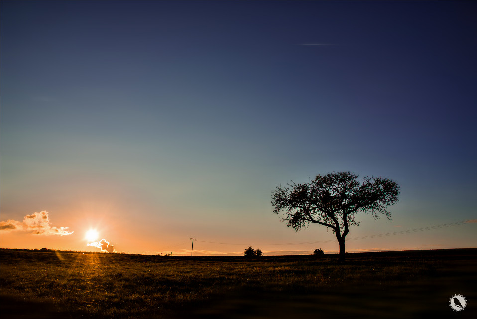 G♡♡d  night    #sunset #landscape with #tree ;)