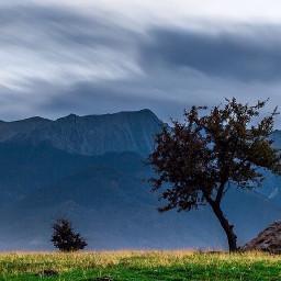 interesting art nature photography seasons