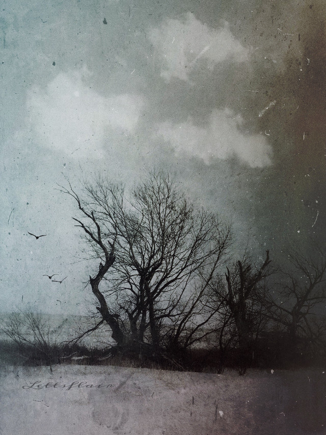 Cold  #dailyinspiration #cold #texture #clipart