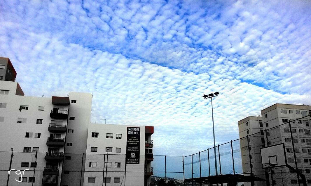 Tenerife ♡   #photography #nature