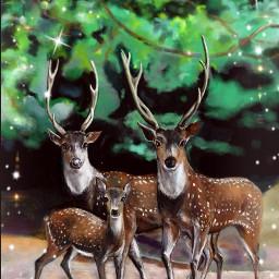 wdpholiday digitaldrawing drawing deers animals