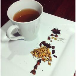 ArtTea tea crynly art dodger vintage cup