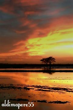 photography nature sunset sky