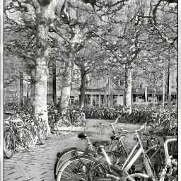 gant bikes blackandwhite freetoedit travel