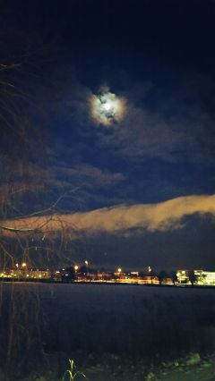 landscape winter night moon