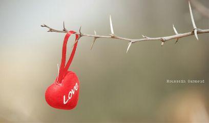 valentine love