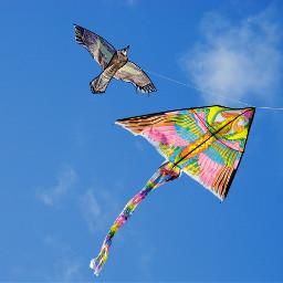 collorfull kite photography