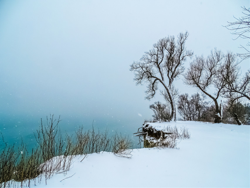 Lake Ontario - taken during yesterday's snow storm. [*F] #freetoedit #photography #winter #nature #snow #landscape #lake #Ontario #ScarboroughBluffs #cliff #park #tree #water #bluegreen