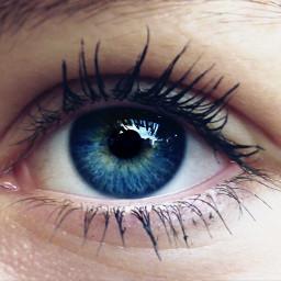 freetoedit eyes eye dailyinspiration blue