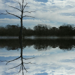 nature water mirror