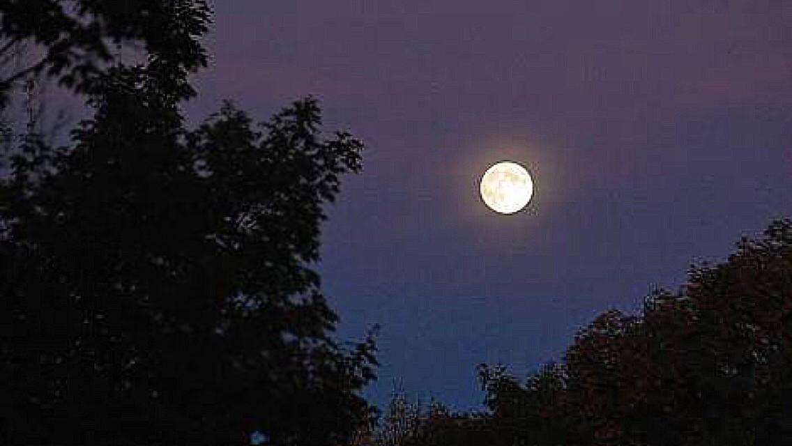 #Lunar