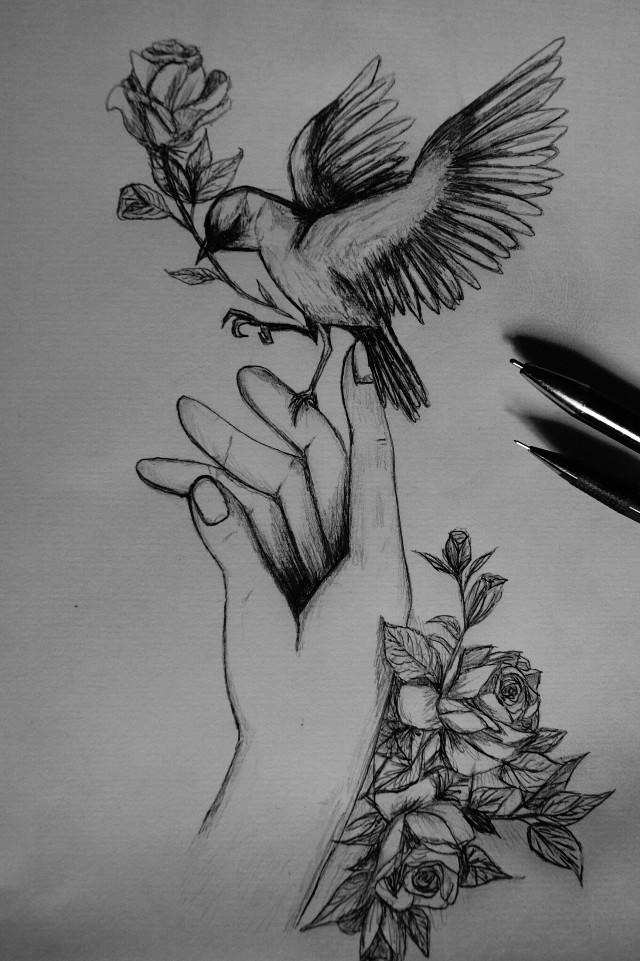 #drawing #selfmade #draw #hand #bymyself  #blackandwhite   Photo:josisunshine ♥♡