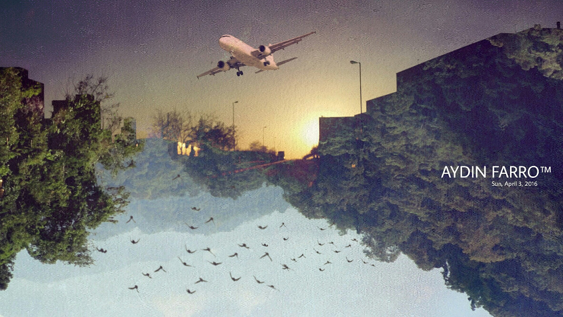 #colorful #pencilart #vintage #popart #sky #fliying #jungle #city #world #graphic #graphicdesign